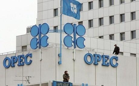 страны ОПЕК считают, что они могут достичь соглашения без участия Ирана