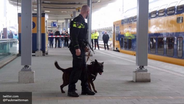 Бельгийские власти придумали,как предотвратить теракты в стране