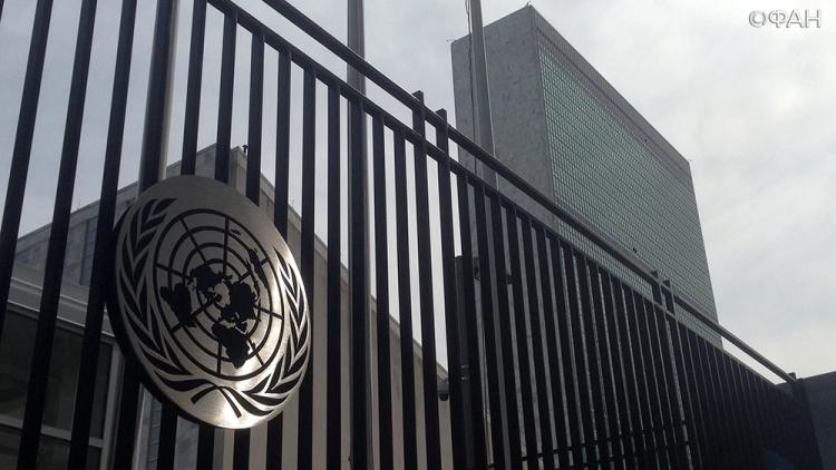 ООН: Говорить о новой конституции Сирии в Женеве пока преждевременно