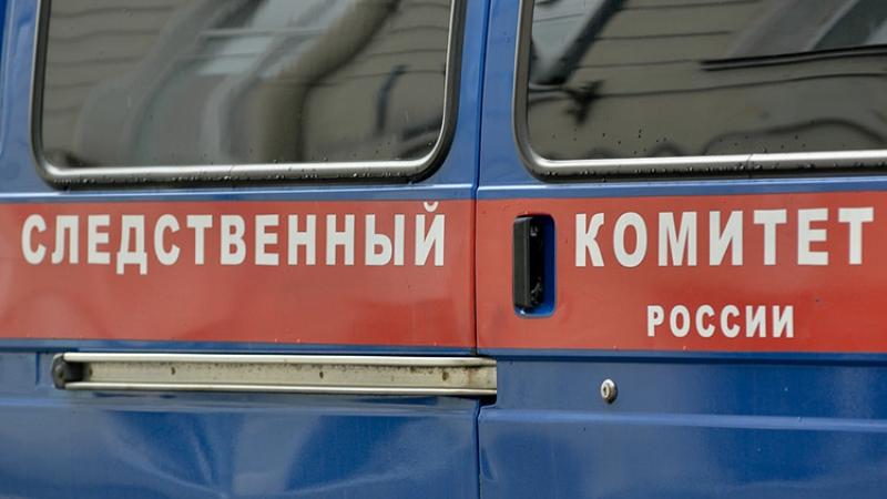 Хозяева сами умертвили собак, растерзавших семилетнюю девочку на Урале