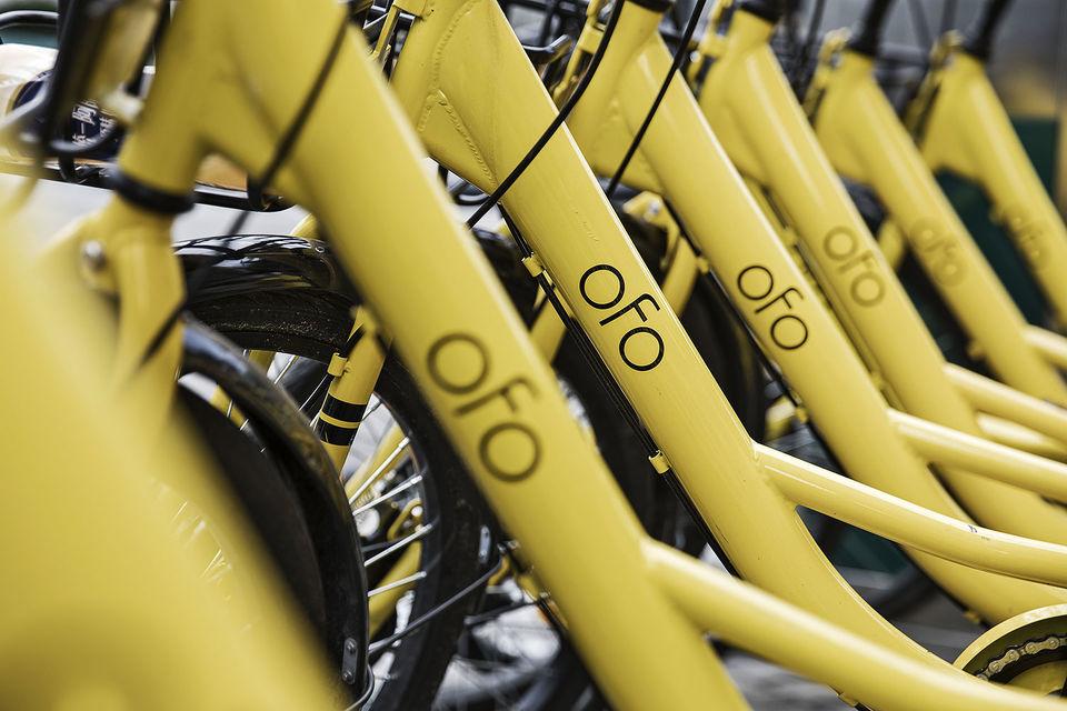 В России появится китайский система велопроката Ofo