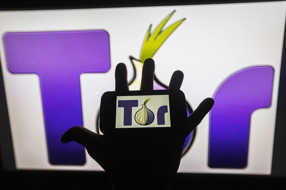 За пять лет количество российских пользователей Tor увеличилось в 3 раза, сообщает Гольдшлаг