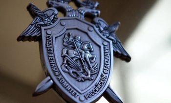 Пропавшую в Новгороде три года назад девочку ищут в Тульской области