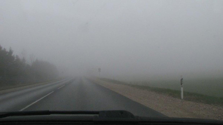 Житель Новгородской области потерялся в тумане