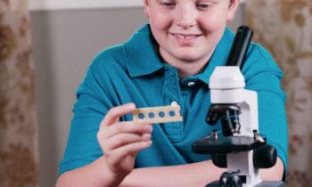 Что в световой микроскоп можно увидеть?