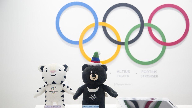 Российские спортсмены смогут пройти с национальным флагом на ОИ-2018