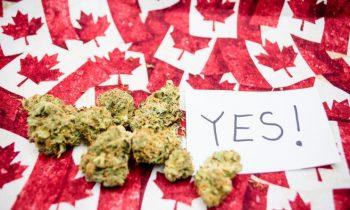 Мир изменился: Канаде погрузилась в «легалайз» ради налоговых поступлений