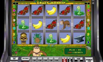 Можно ли выиграть в онлайн слот Crazy Monkey