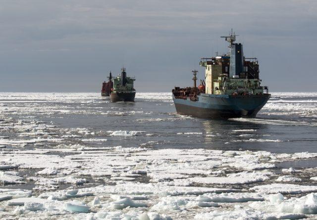 Дубайская DP World хочет быть оператором портов российского Северного морского пути