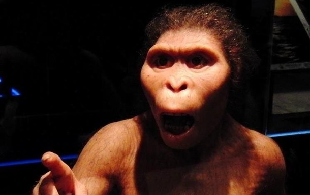 Древние люди были глупее современных обезьян — ученые