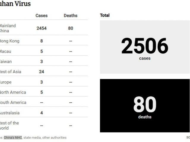 Число жертв коронавируса выросло до 80