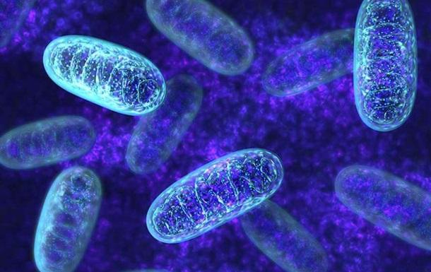 Ученые разгадали еще одну загадку нашей эволюции