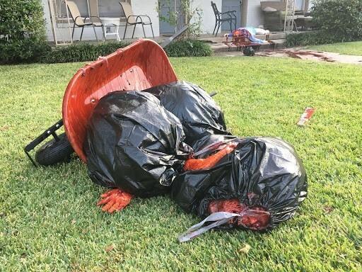 Художник создал сцену резни у своего дома на Хэллоуин и восхитил интернет
