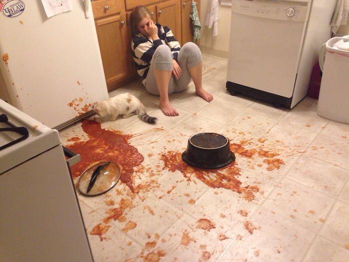 Забавные неудачи на кухне вернут веру в то, что из вас вышел отличный повар
