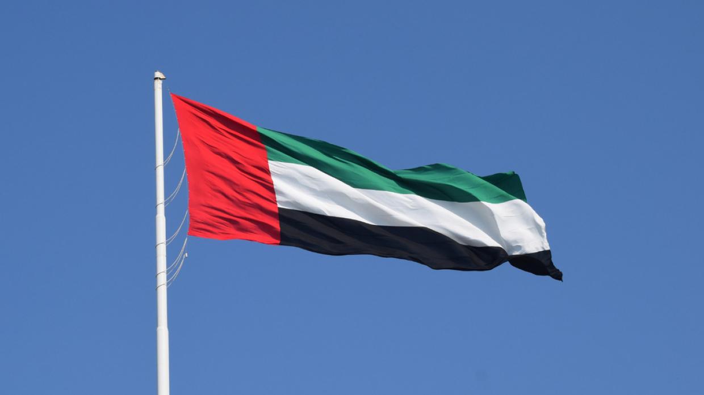МИД ОАЭ: постоянное перемирие в Ливии объединит страну после кризиса