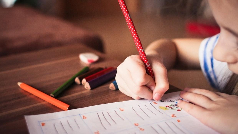 Ученые выяснили, можно ли спрогнозировать математические способности у детей