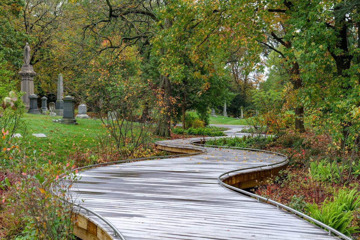 Современная дорожка сделанная в виде деревянного настила.