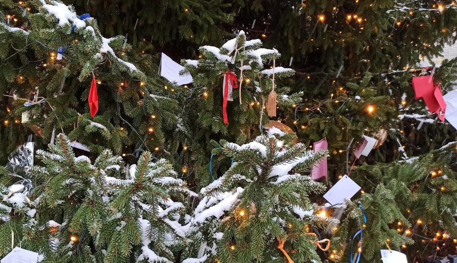 Что просили на Новый год у Деда Мороза взрослые