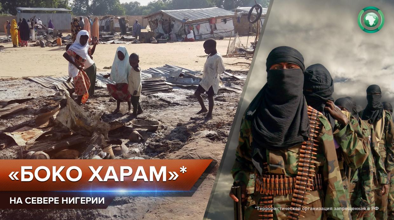 Террористы «Боко харам» напали на город Гуджба в нигерийской провинции Йобе