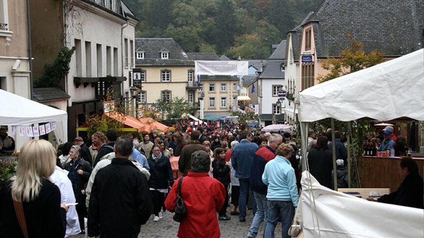 Власти Люксембурга допустили крах системы здравоохранения страны