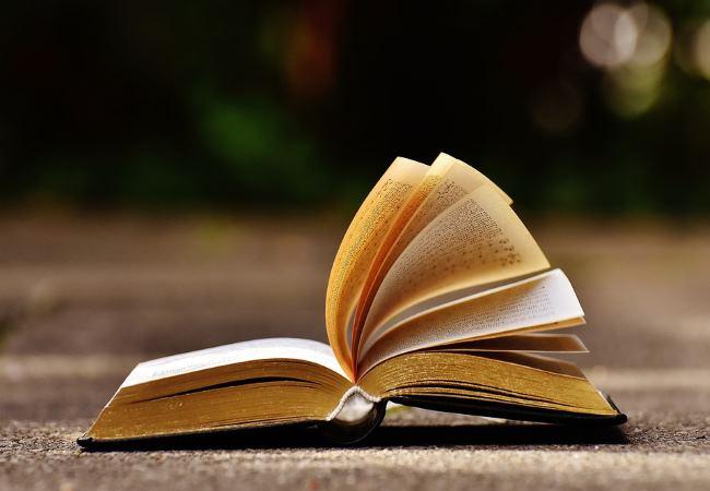 Какую книгу почитать на досуге?
