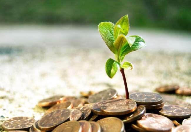 Выберите программу инвестиций Парамайнекс Финанс