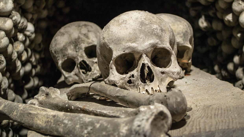 Компенсация за геноцид: как Германия пытается откупиться от преступлений в Африке