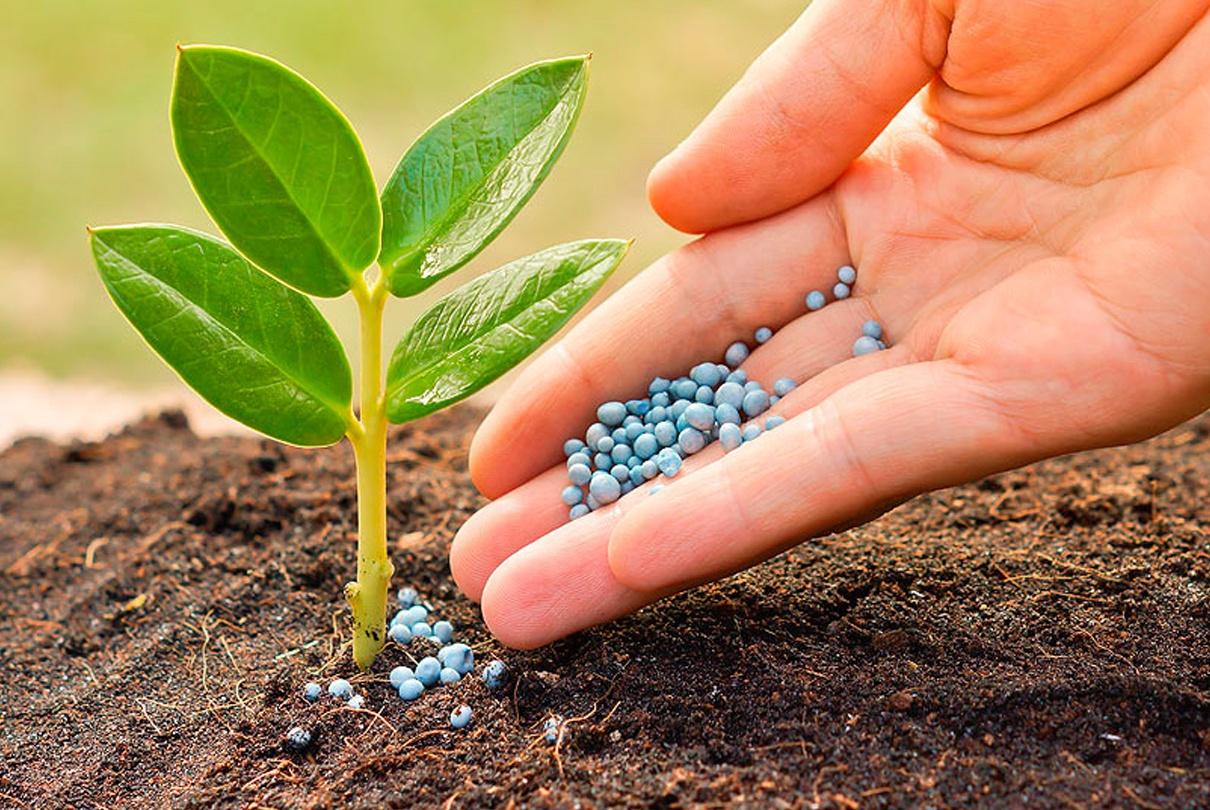 Застосування оригінальних засобів захисту рослин, добрива і засоби захисту рослин